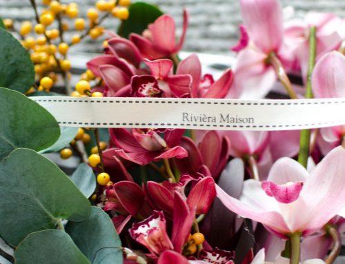 De Cymbidium: een prachtige orchidee in een vaas