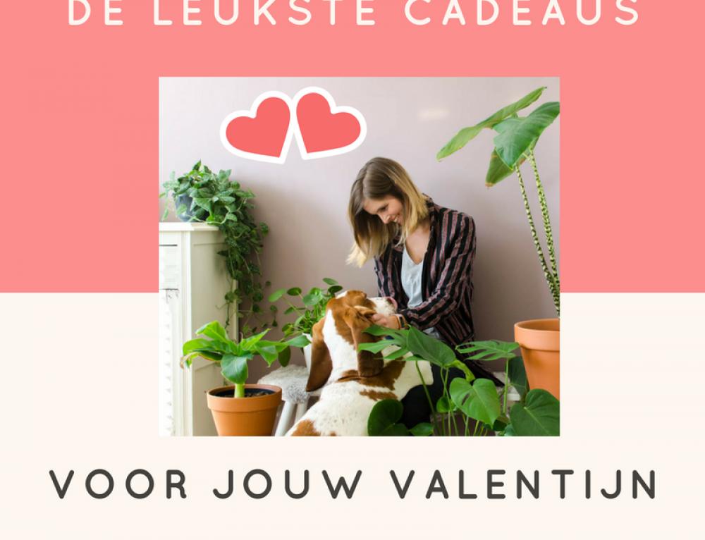 Valentijnscadeautjes voor een interieurjunkie