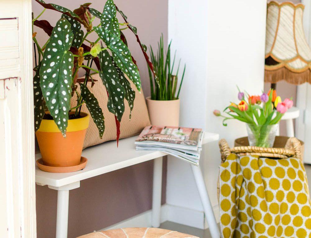 Met deze items maak je leuke hoekjes in huis