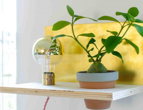 DIY workshop Bosch: verslag en het resultaat