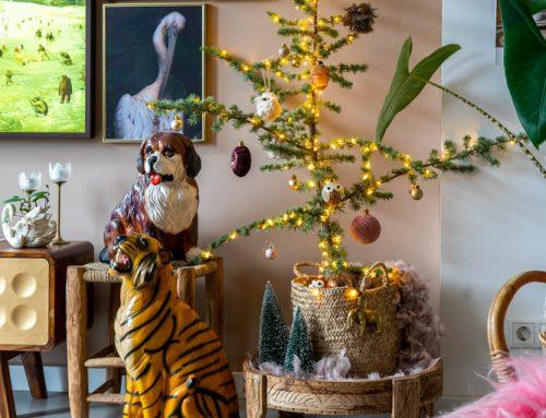Onze ceder kerstboom van 2019