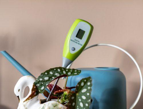 Een vochtigheidsmeter voor je kamerplanten: handig of overbodige gadget?