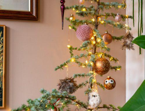 Duurzame kerstboom: hergebruik je ceder boompje